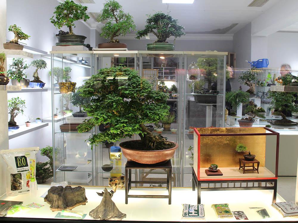 bonsai concept charlottenburg nipponya. Black Bedroom Furniture Sets. Home Design Ideas
