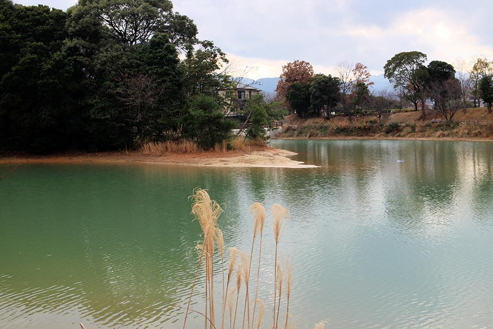 Seinanmori no Kohan Park